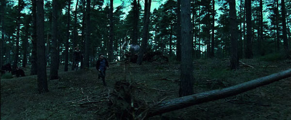 HP7Forest