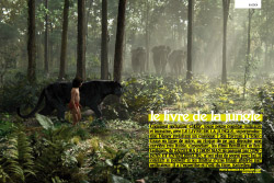 TEASER-53_JUNGLE-BOOK