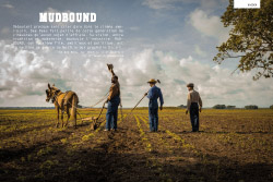 TEASER-69_MUDBOUND