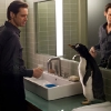 Poppers-Penguins-6