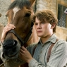 4-War-Horse-New-Pics